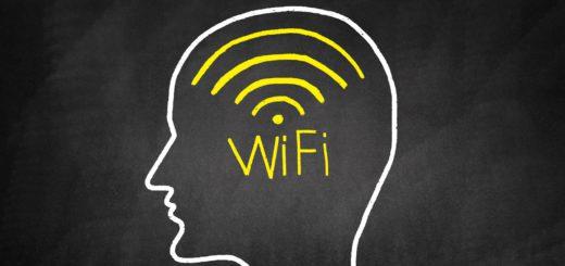 Internet: ferramenta essencial na volta às aulas